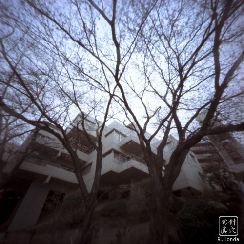 桜台コートビレジ